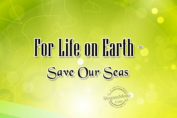 Preserving Natural Resources Slogans - Page 2