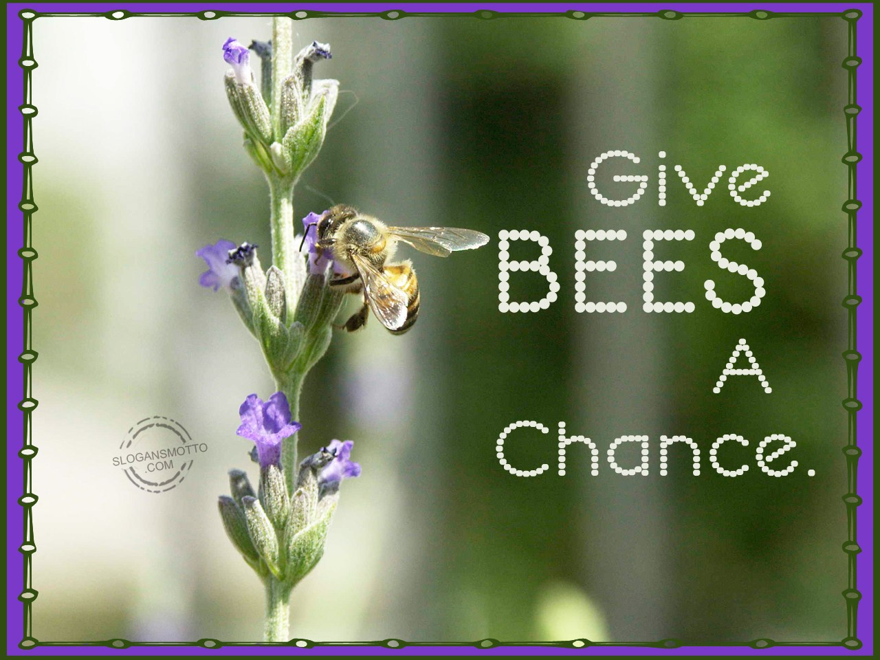 chance and coincidence in little bee All coincidences have meaning nothing happens by chance have you  one  small change, even a seemingly tiny insignificant change has.