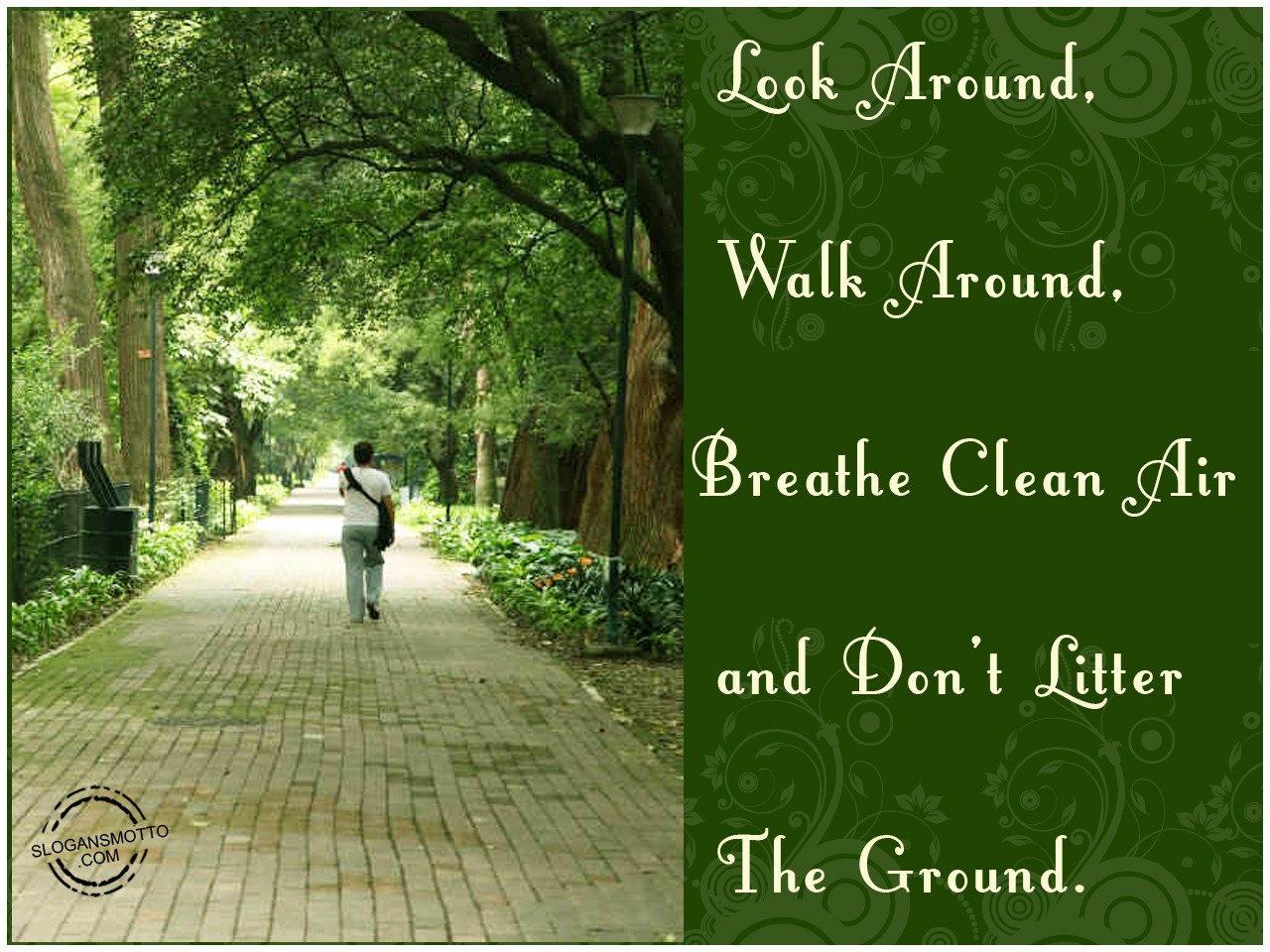 https://www.slogansmotto.com/wp-content/uploads/Look-around-walk-around-breathe-clean-air-and-don%E2%80%99t-litter-the-ground.jpg