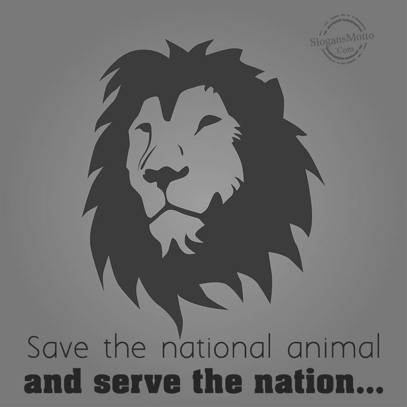 Slogans For Saving Animals