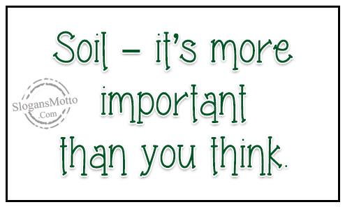 Soil conservation slogans for Soil in english