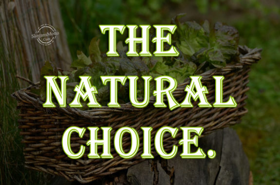 Eating All Natural And Organic