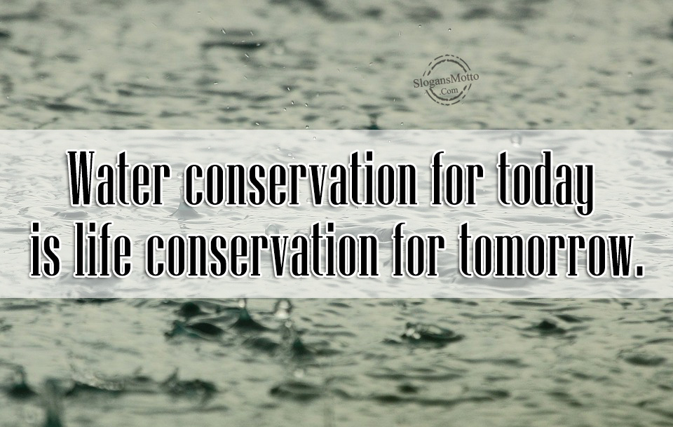 save water for tomorrow Catchy slogans on environment that will  enjoy tomorrow  go green slogans pollution slogans save animal slogans save tree slogans save water slogans .