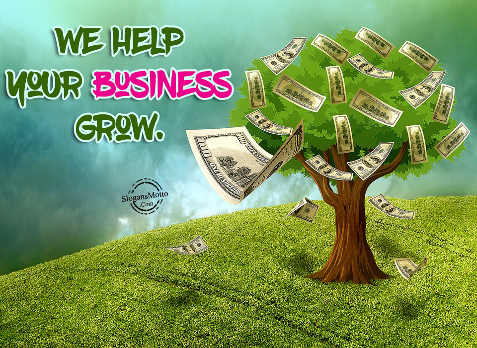 We Help Your Business Grow